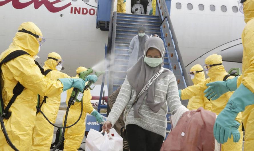 Авиакомпании, приостановившие полёты из-за коронавируса